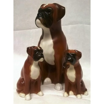 QUAIL BOXER DOG SALT, PEPPER & MONEYBOX GIFT SET