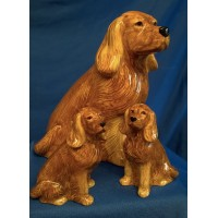 QUAIL COCKER SPANIEL SALT, PEPPER & MONEYBOX GIFT SET – GOLDEN