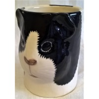 QUAIL GUINEA PIG PENCIL POT, DESK TIDY OR VASE – BLACK & WHITE