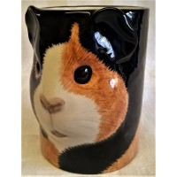 QUAIL GUINEA PIG PENCIL POT, DESK TIDY OR VASE – MULTICOLOURED