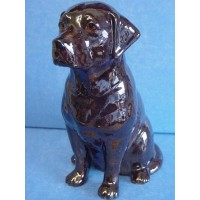 QUAIL LABRADOR MONEYBOX - CHOCOLATE BROWN