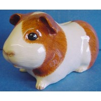 QUAIL GUINEA PIG MONEYBOX – DUTCH (RED & WHITE)